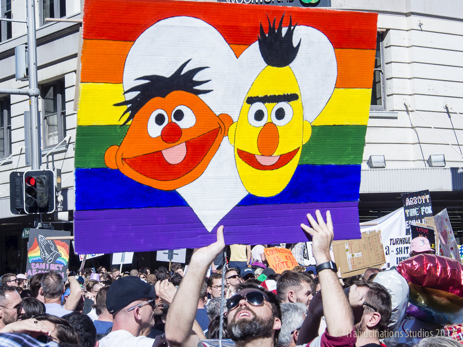 "Ernie and Bert vote ""Yes"""